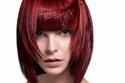 شعر قصير أحمر