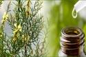 فوائد زيت شجرة الشاي للبشرة