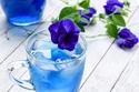 فوائد الشاي الأزرق للبشرة والجسم