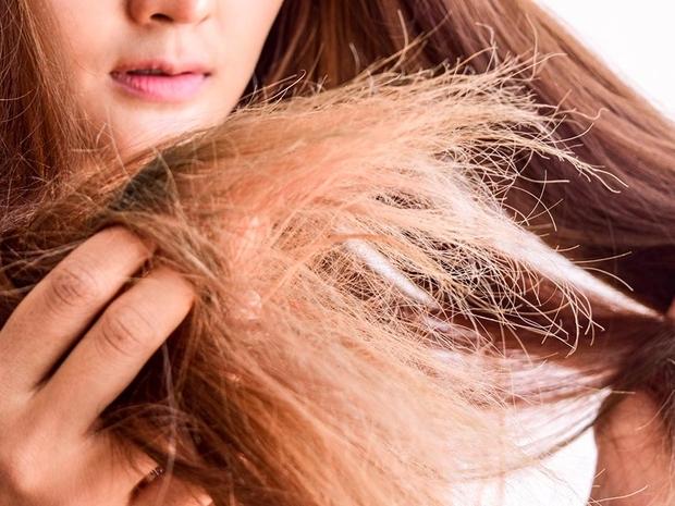 أسباب تقصف الشعر وعلاجها قبل العيد
