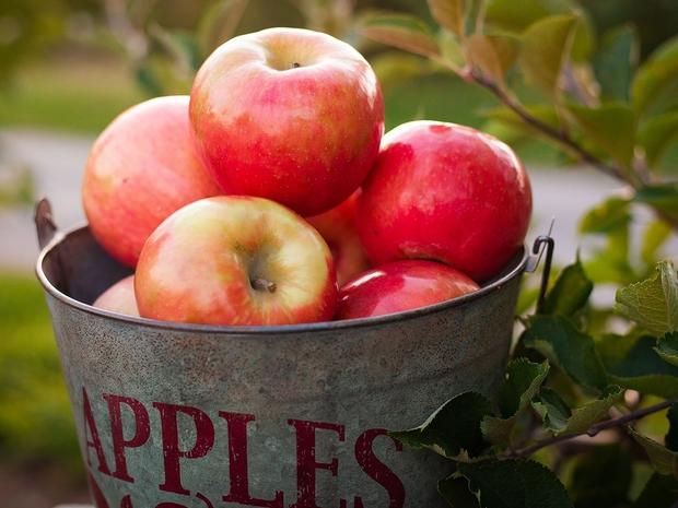 ماسك التفاح للشعر